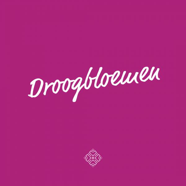 Droogbloemen-bloemen-purple-joy-bloem-dried-flowers-urbanheart
