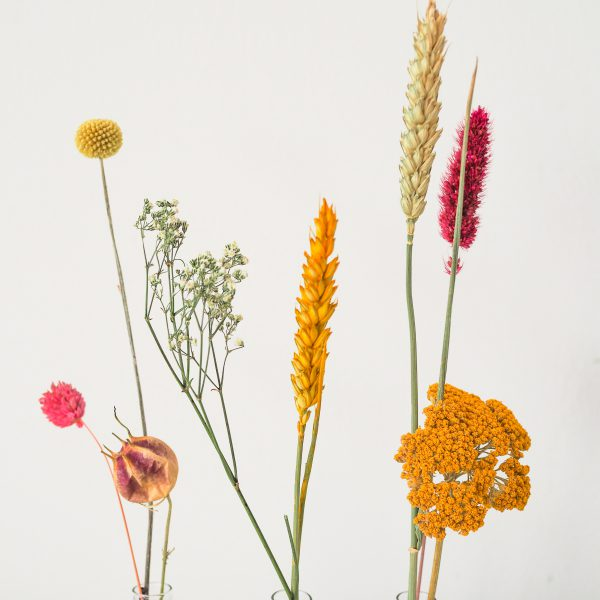 Droogbloemen-vaasje-per-post-bloemen-urbanheart