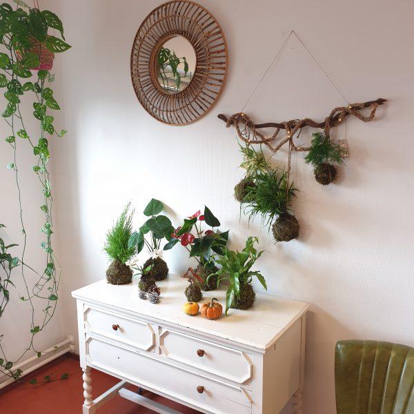 Kokedama-workshop-plantenhanger-plant-groningen-leeuwarden-uitje-creatief-urbanheart