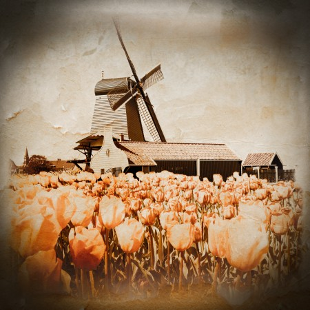 Oud Hollands arrangement-groningen-leeuwarden-assen-dokkum-urban_heart