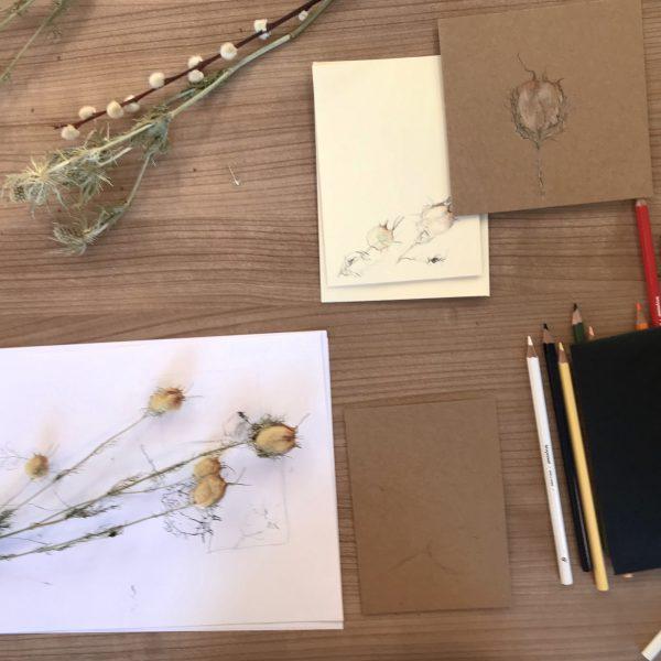 botanisch-tekenen-plant-bloem-dier-natuur-creatief-groningen