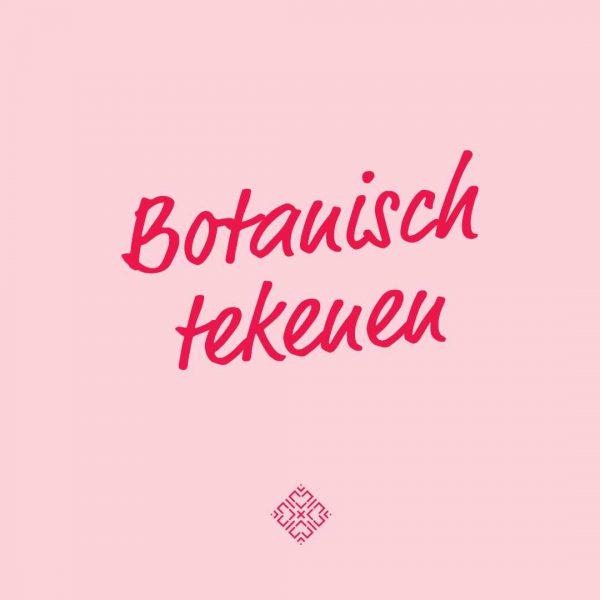 botanisch-tekenen-plant-bloem-dier-natuur-creatief-groningen-zwolle-urbanheart