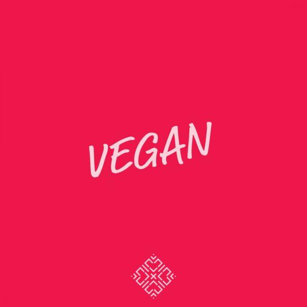 vegan-kookworkshop-koken-workshop-samen-eten-groningen-urbanheart