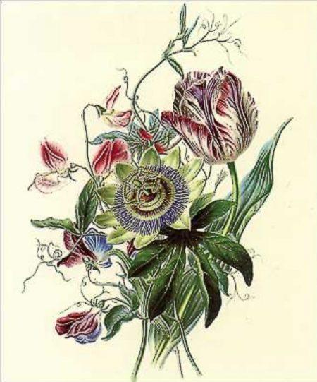 workshop botanisch tekenen urban heart